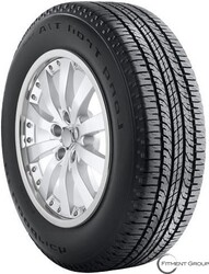 ***P255/65R16 LONG TRAIL T/A TOUR 106T BSW BF